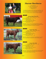 Page 10 of the Hill Country Classic sale catalogue
