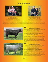 Page 11 of the Hill Country Classic sale catalogue