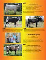 Inside cover of the Hill Country Classic sale catalogue