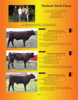Page 2 of the Hill Country Classic sale catalogue